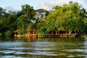 How to Visit Tortuguero National Park Responsibly