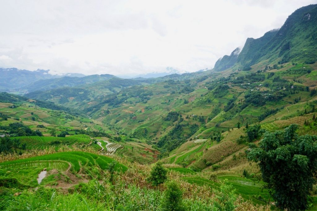 Ha Giang Vietnam Rice Terrace