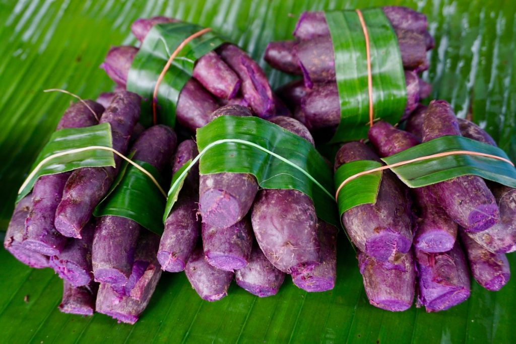 purple yam vang vieng